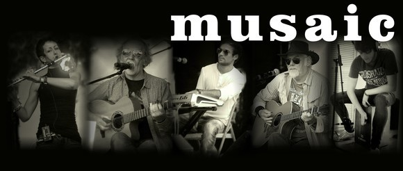 Musaic - Irish Folk Live Act in Rochdale