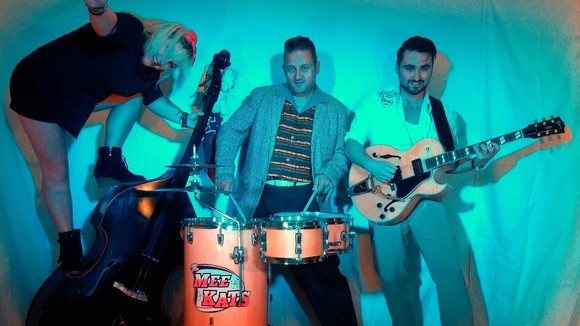 The Mee Kats - Country Rock 'n' Roll Rockabilly Rock Country Live Act in Darlington