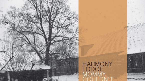 Harmony Lodge - Folk Pop Live Act in Dresden