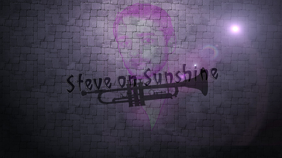 Steve on Sunshine - Pop Trumpet Singer/Songwriter Techno Electro DJ in Leipzig
