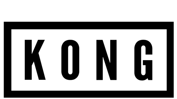 KONG - Indie Punk Live Act in Sheffield