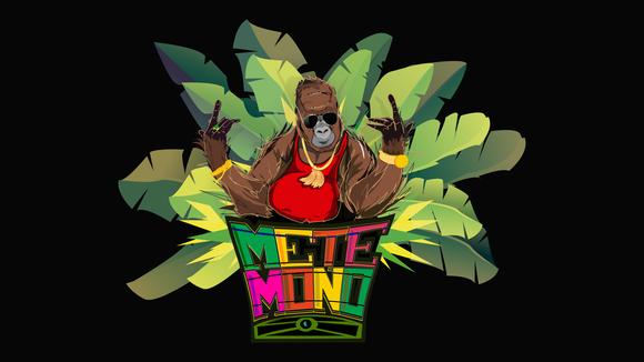 Mete Mono - Afro-Latin Ska Reggae Cumbia Latin Rock Live Act in Hamburg