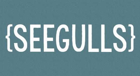 Seegulls - Indie Alternative Post-Punk Melodic Indie Live Act in Whaley Bridge