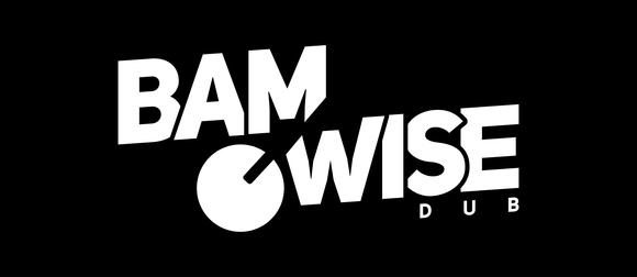 BAMWISE - Dub Trance Electropunk Reggae Electronic Live Act in ZAGREB