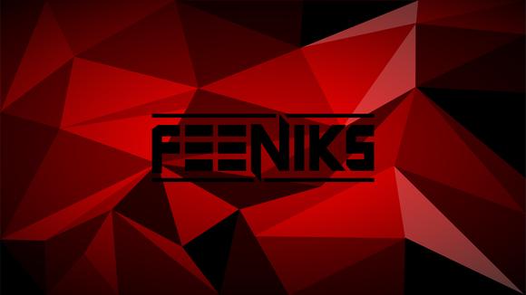 Feeniks - Trap Electro Hip Hop Melodic Progressive House DJ in Basel