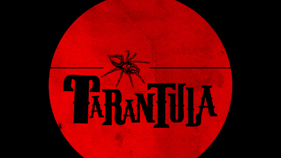 Tarantula - Folk Rock Folk Rock Punk Rock Gypsy Live Act in London