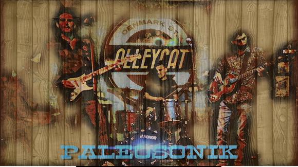 Paleosonik - Alternative Rock Rock Electro Melodic Indie Live Act in London