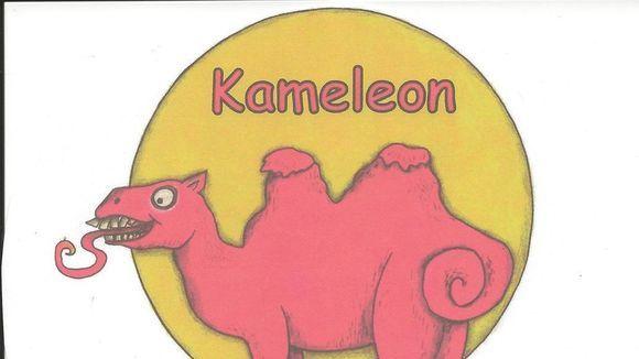 Kameleon   Eure Band für Feste und Partys