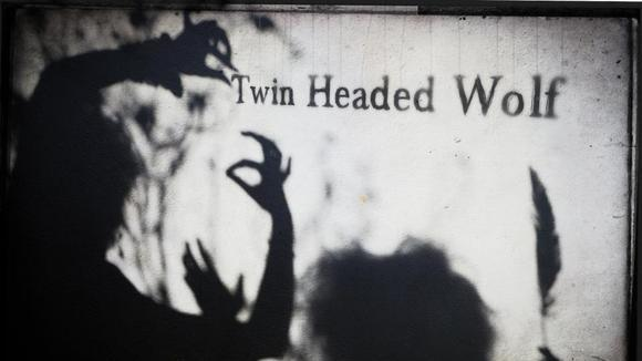 Twin Headed Wolf - Folk Live Act in Dublin