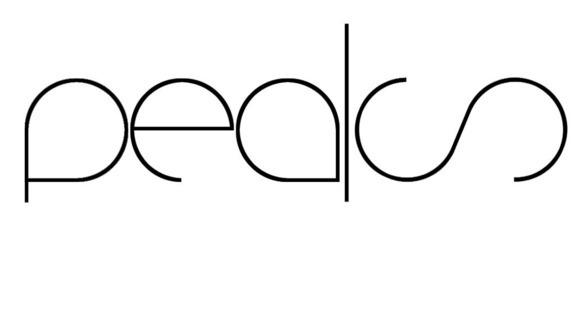 Peaks - Techno Live Act in Dublin